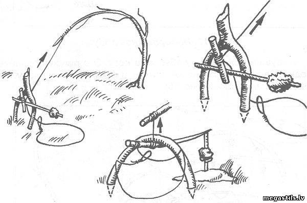 ловля фазанов крючками